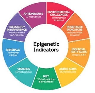 epi-geneticskerriabbottnaturopath